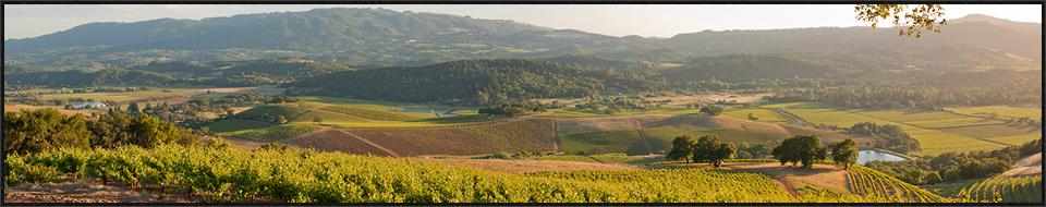 discover sonoma wine tours 2