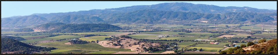napa valley wine tours 1