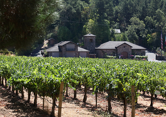 Napa Valley Luxury Private Wine Tasting by Limousine