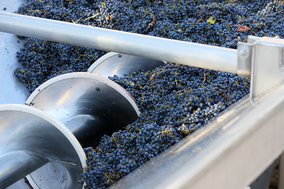 wine making in process in california wine tours