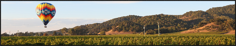 napa valley activities wine tours 1