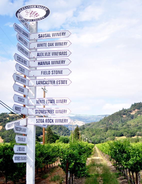 SF to Alexander Valley Wine Tour