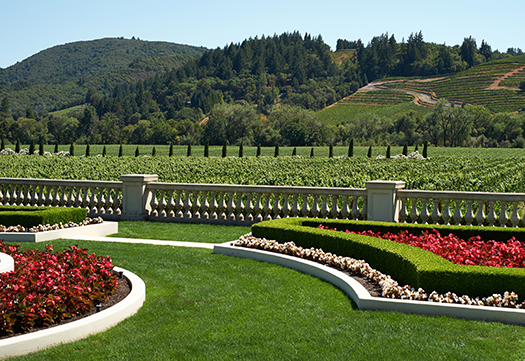 Dry Creek Wine Tours by Luxury Limousine