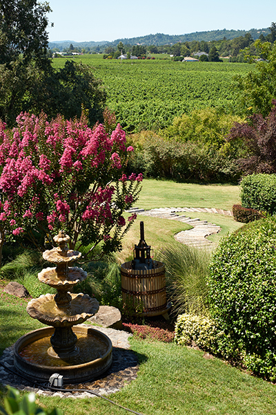 san francisco wine tours 2013 americas cup