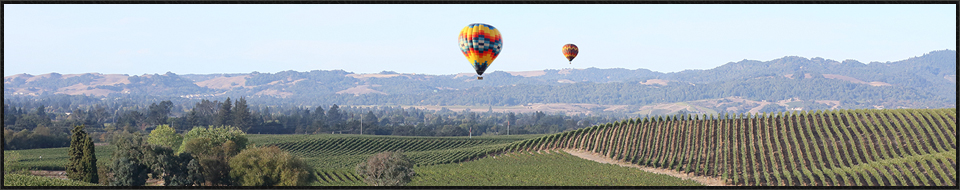 napa valley balloon ride  wine tour package