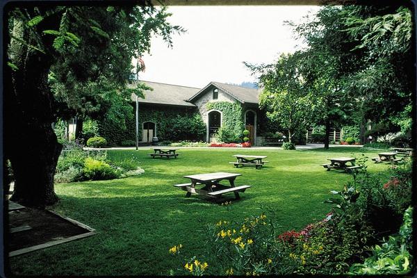 grounds dry creek vineyard