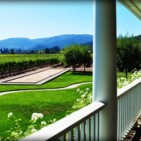 Napa Valley Wineries with Great Views