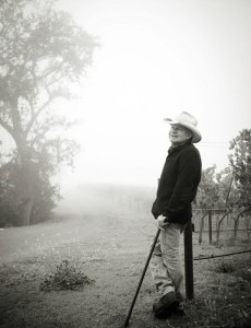 john caldwell foggy vineyard