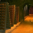 Napa Valley Winery Tours