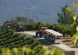 tram tour experience at benziger family winery