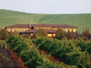 jamieson ranch vineyards napa valley