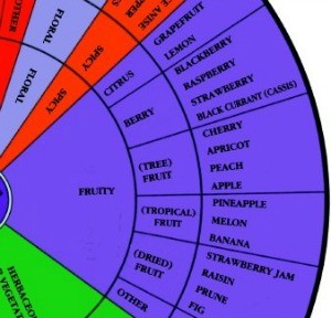 Ann Nobles Famous Aroma Wheel