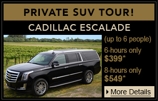 Private SUV Tour Home