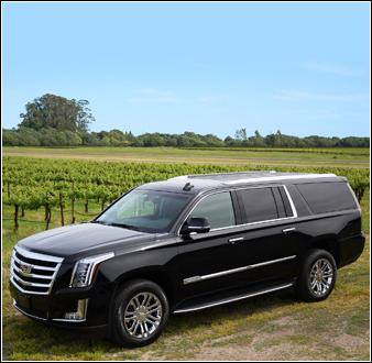 Private SUV Tour Image