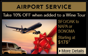 holiday airport service home