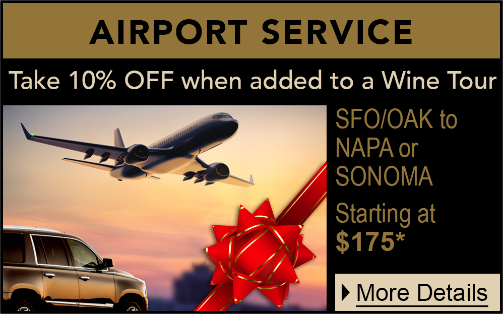 holiday airport service promo mobile