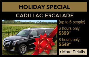 holiday private suv tour home