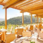 Michelin Star Restaurants of the Napa Valley