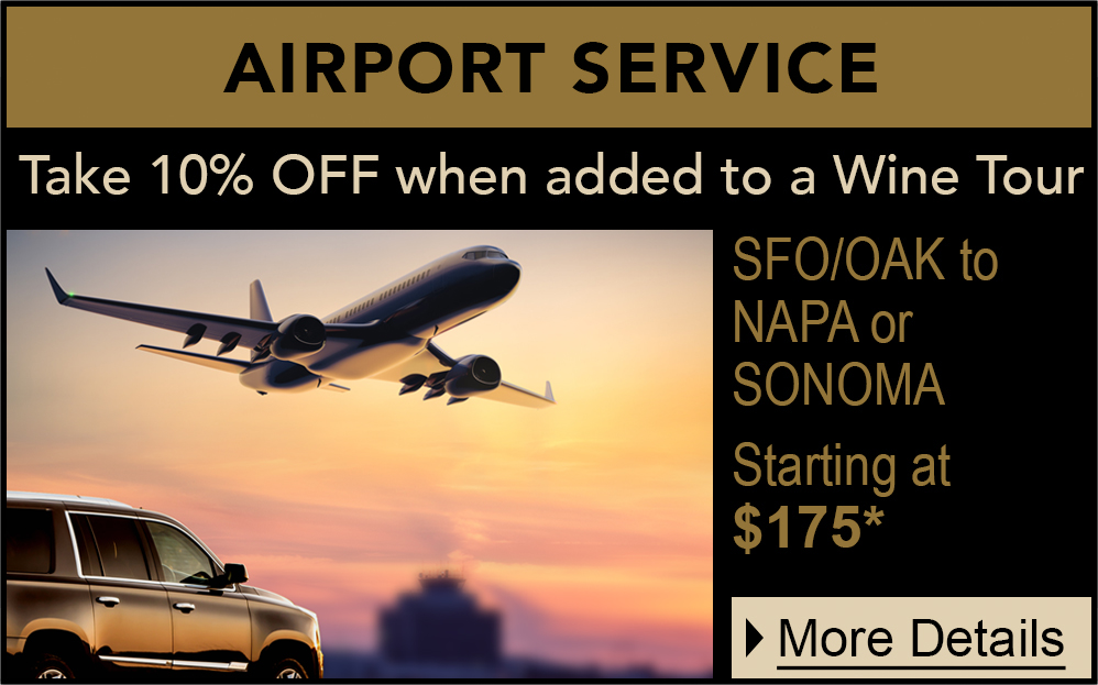 airport WINTER service promo