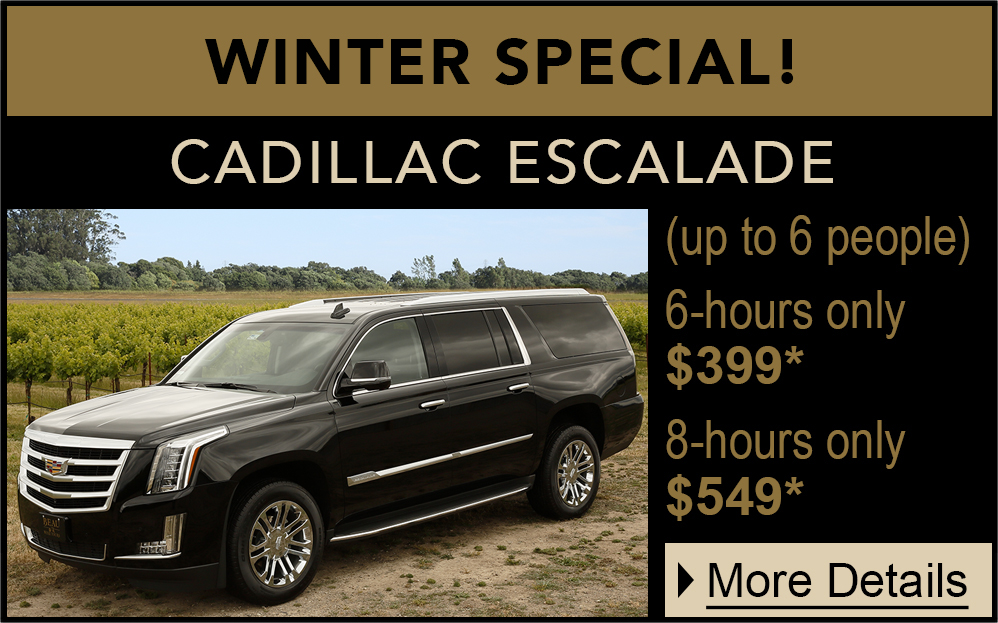 private WINTER suv promo