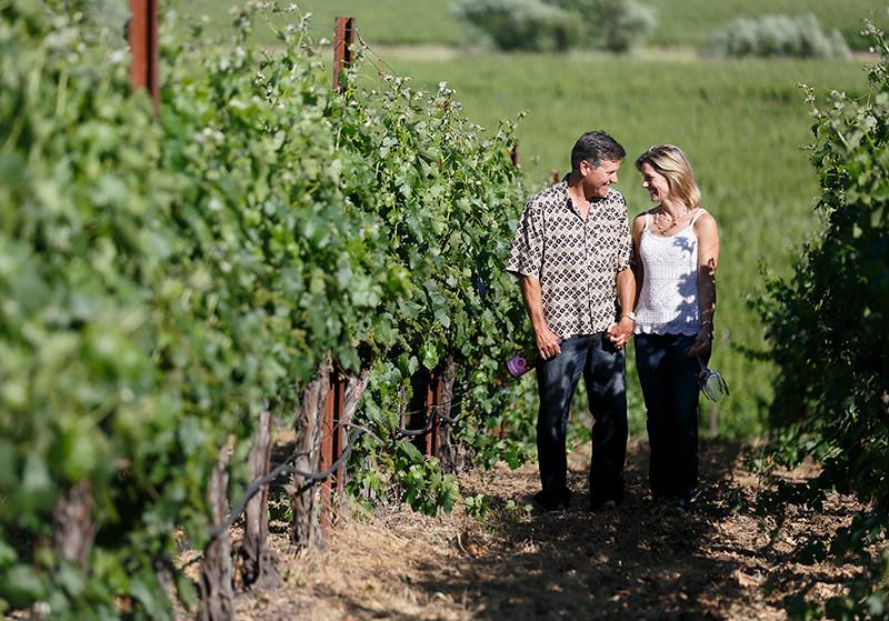 sonoma wine tours